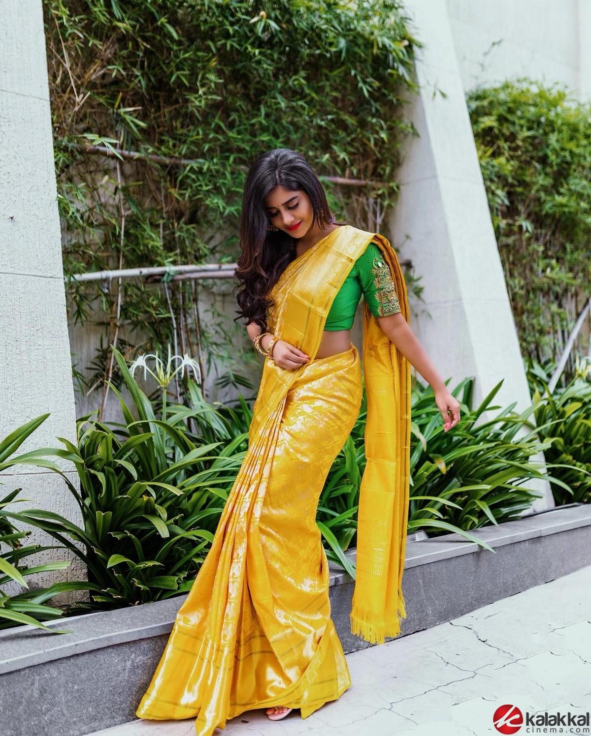 Actress Nabha Natesh Stills