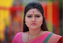 Roja Serial Priyanka Photos