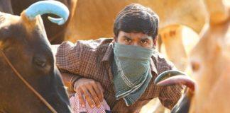 Small Boy in Karnan Movie