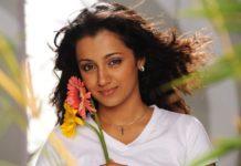 Sharmi About Trisha Marriage